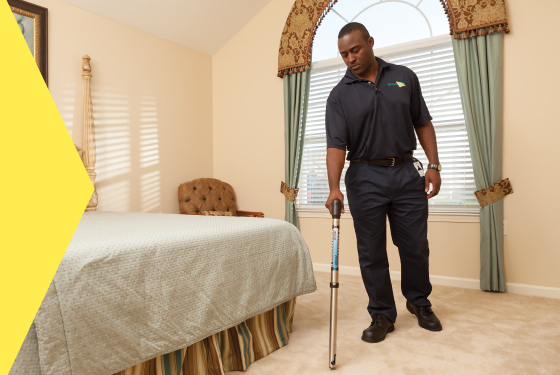 Carpet Cleaning in Florida