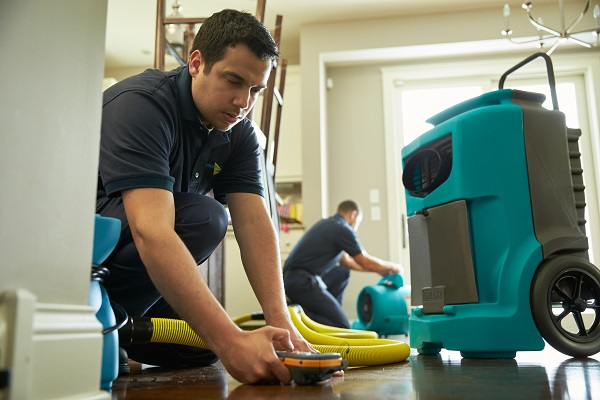 What is the Best Water Damage Restoration Company in Naples, Florida Today?