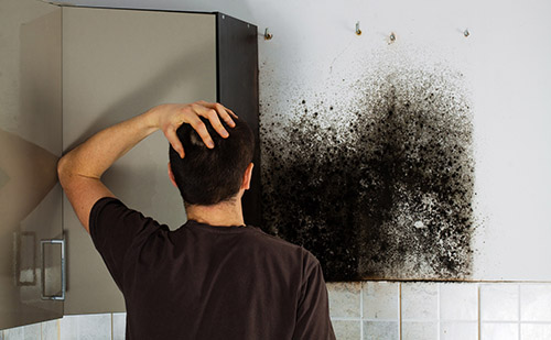 How to Prevent with Mold and Mildew in your Home