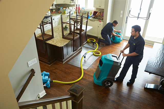 Top Water Damage Restoration Company in Fort Myers, FL