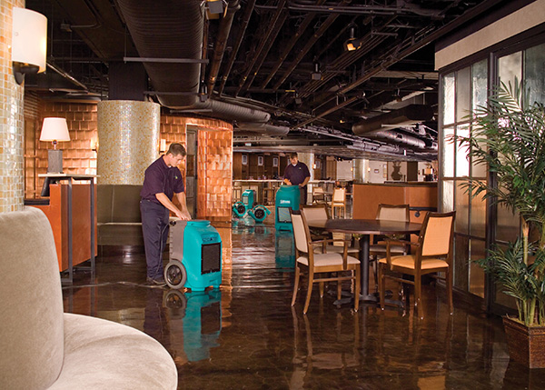 How to Prevent Water Damage in Your Commercial Establishment