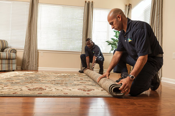 Reasons to Hire Professional Carpet Cleaner in Florida