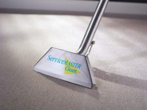 Carpet Cleaning: Why You need it for your Business