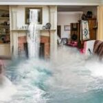 water damage Punta Gorda