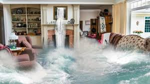 Professional Restoration Services For Water Damage In Sarasota!