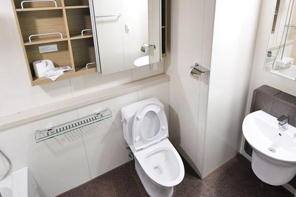 Common Causes of Flooding Toilets