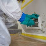 mold damage ServiceMaster by Wright
