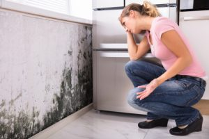 Cleaning Mold In My Home – 3 Facts You Should Know Before Cleaning Mold Yourself