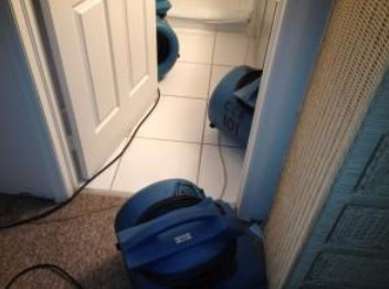Broken Toilet Line Causes Water and Mold Damage